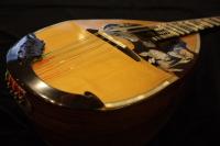 http://gj.294bros.com/news/mandolinfair/iguchi07.JPG