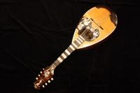 http://gj.294bros.com/news/mandolinfair/iguchi08.JPG